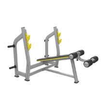 Beast-23 Olympic Decline Bench