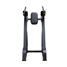 DFT-647 Vertical Knees Raise / Dip Stand
