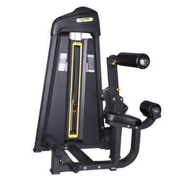 DFT-695 Abdominal Crunch / Back Extension