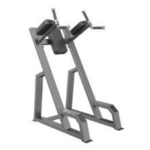 E3047 Dip / Vertical Knee Raise