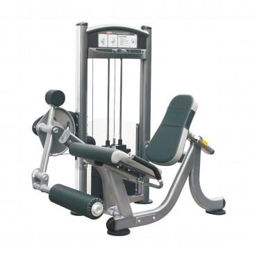 IT9305 Leg Extension